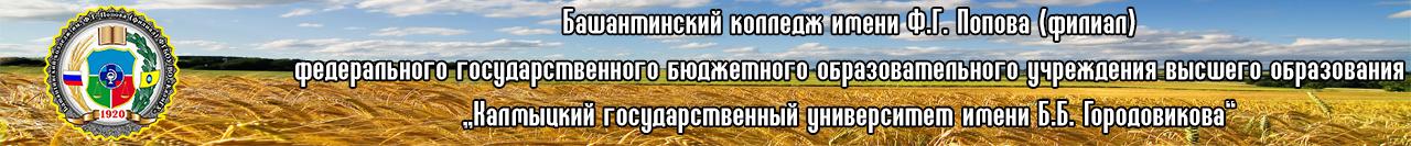 Башантинский колледж имени Ф.Г. Попова (филиал КалмГУ)